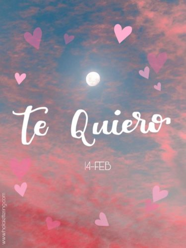 te quiero en lettering san valentin